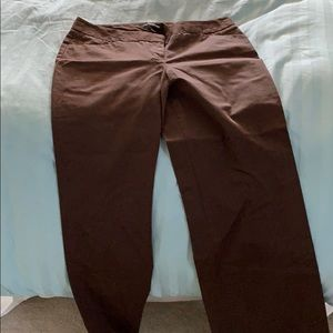 Brown express pants
